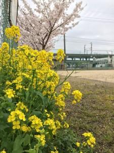 takayanagi_dai2_014