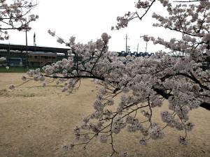 takayanagi_dai2_021