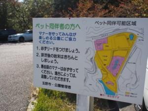 tamano_miyama_006
