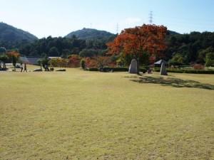 tamano_miyama_040