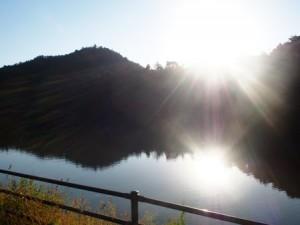 tamano_miyama_060