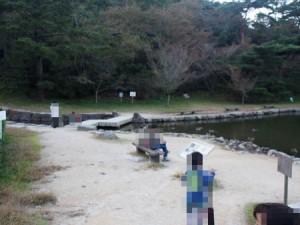 tamano_miyama_062