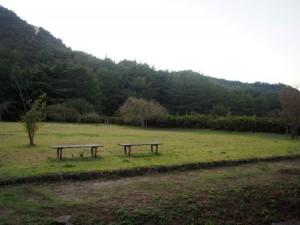 tamano_miyama_079