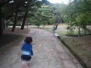 tamano_miyama_081