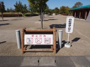 tamano_shizen_taiken_003