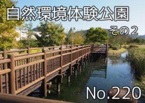 tamano_shizen_taiken_101
