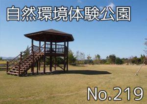 tamano_shizen_taiken_300