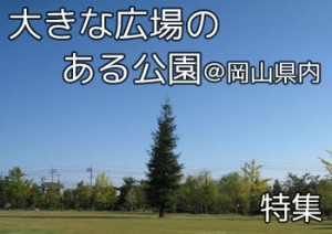 tokusyu_big_hiroba_000