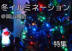 tokusyu_fuyuirumi_000