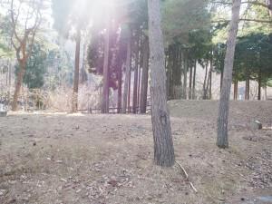 tsudani_camp_014