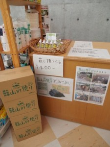 tsuguro_camp_009
