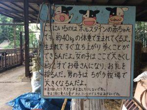 yasutomi_bokujyo_029