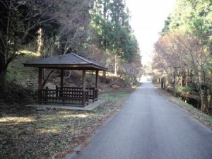 yayakayama_078