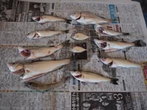 yoshiigawa_kasennjiki_026